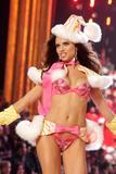 th_97115_Victoria_Secret_Celebrity_City_2007_FS392_123_356lo.jpg